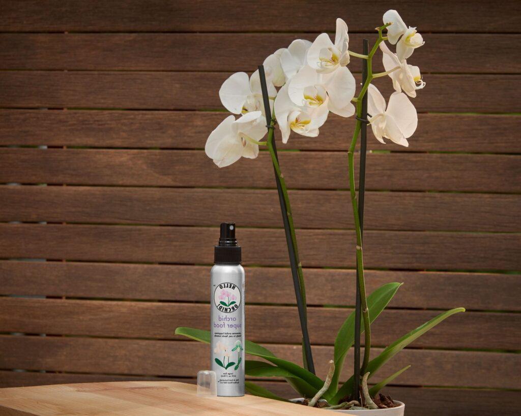 ev yapımı orkide besini